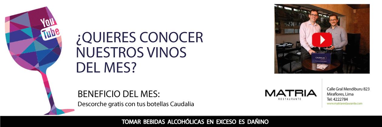 Caudalia Win Box Video Youtube degustación. Aprender de vinos en Lima y Perú