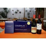 Caudalia Wine Box Gold #1